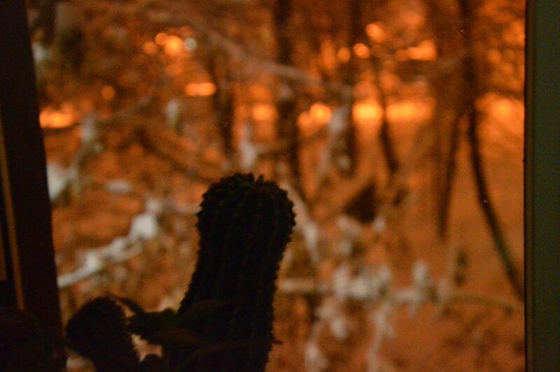 Заглядывая в 7-ю зиму