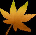 pbp_fayette_OM_leaf_rust.png