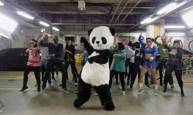 Большая панда танцует