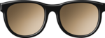 ljd_wos_sunnies black.png