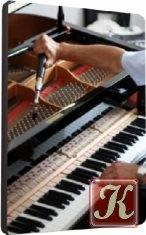 Книга Как настроить пианино