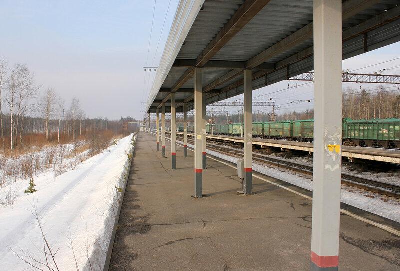 Платформа на станции Горы, вид на Питер