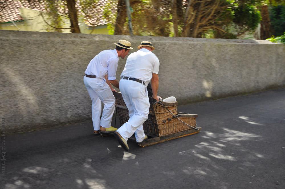 Madeira-Garten-(8).jpg