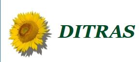 Дитрас.png