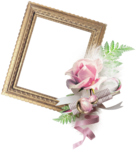 VC_Christmasrose_cluster4_frame.PNG