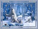 Белые медведи.jpg