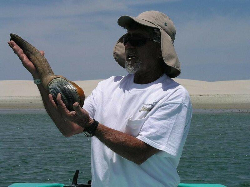 Гуидаки — это вид морских моллюсков, считающихся самыми крупными роющими моллюсками.