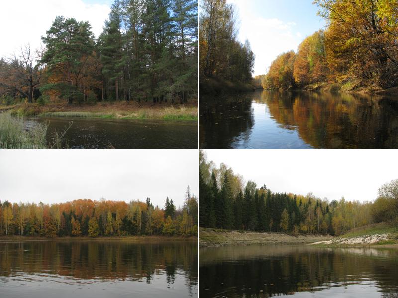 Река Керженец — фото автора статьи — Мир меняется   600x800