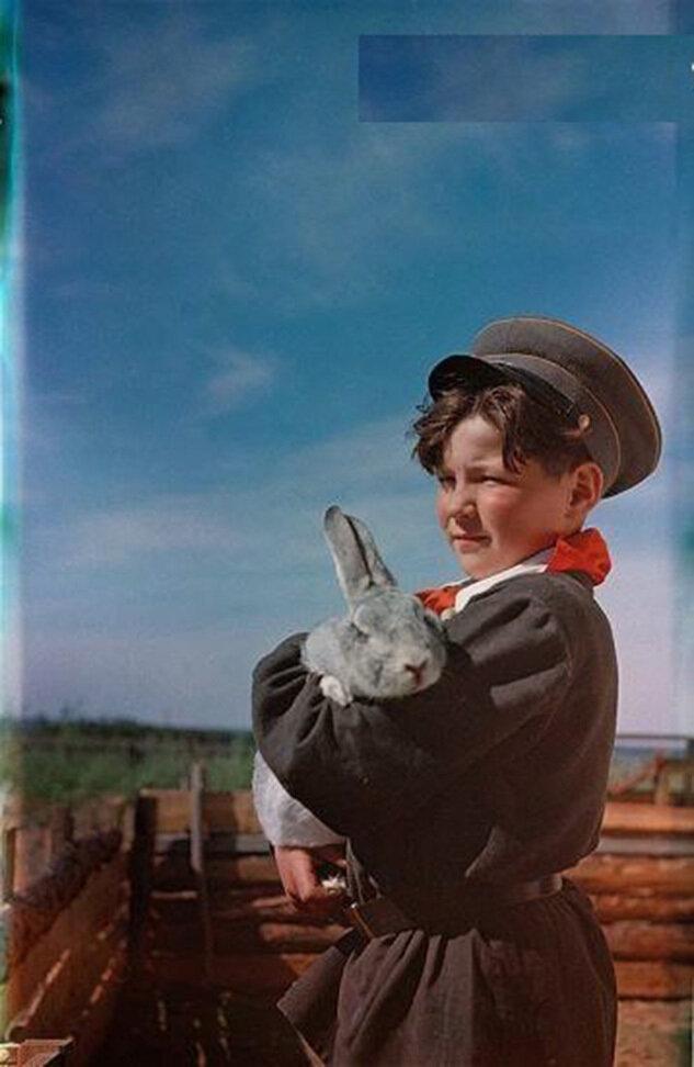 Бригадир кролиководов школьного колхоза, 1958