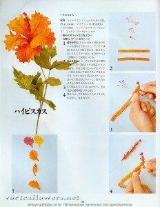 Мастер-класс. Гибискус  в японской технике цветоделия от Vortex  0_fc0a3_6478447f_M