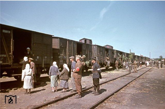 Погрузка украинских ост-арбайтеров на станции Долинская, август 1943.jpg