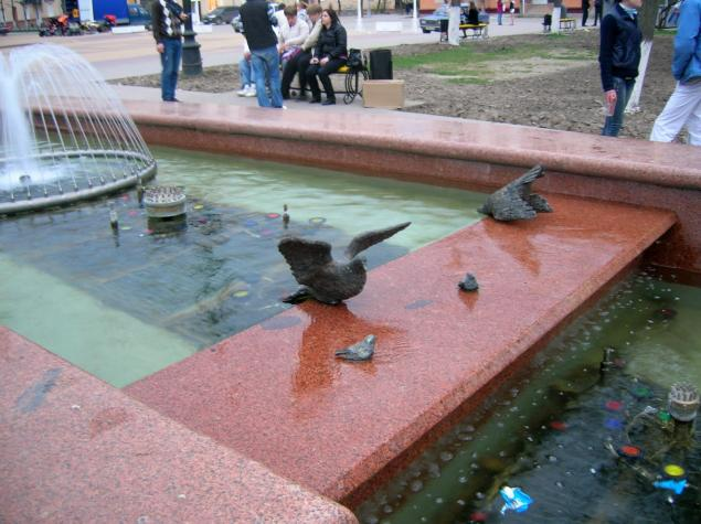 Голуби на театральной площади в Калуге