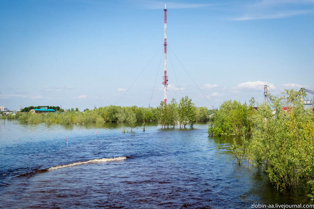 Паводок на р. Обь