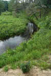 [2013] Река Виша, чуть дальше д. Рождествено