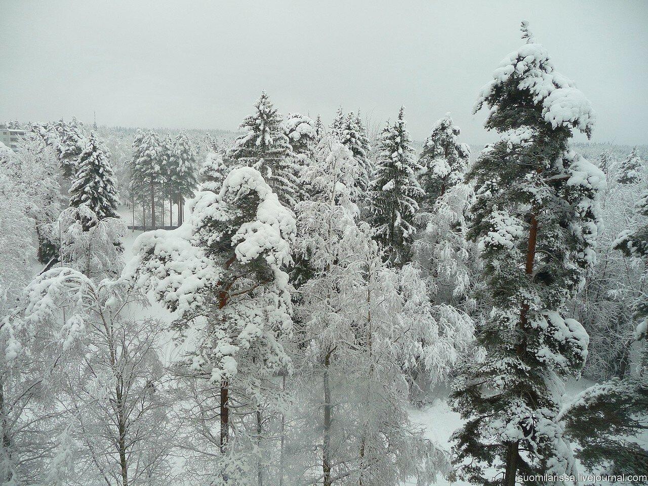Kouvola, 3.02.2015