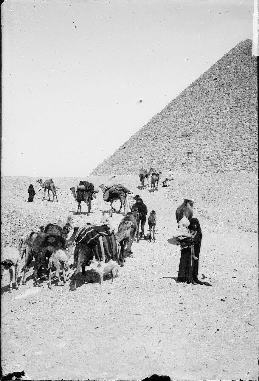 Караван бедуинов возле пирамиды. 1898