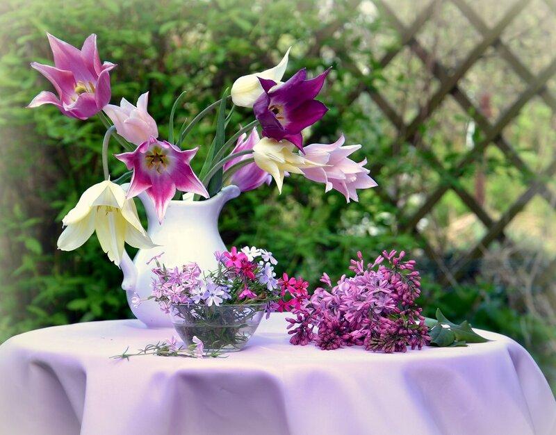 .Цветок,  у каждого свой срок, цветенья и благоуханья,