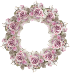 VC_Christmasrose_cluster3.PNG