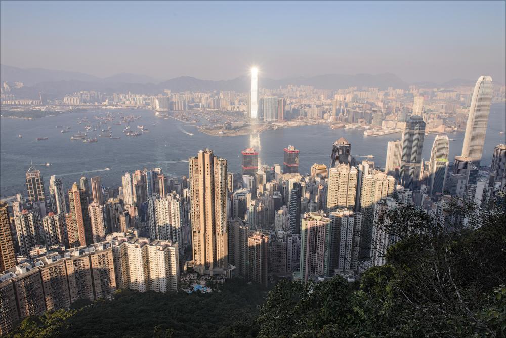 Гонконг муравейник фото