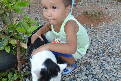 Азатик нашел кота