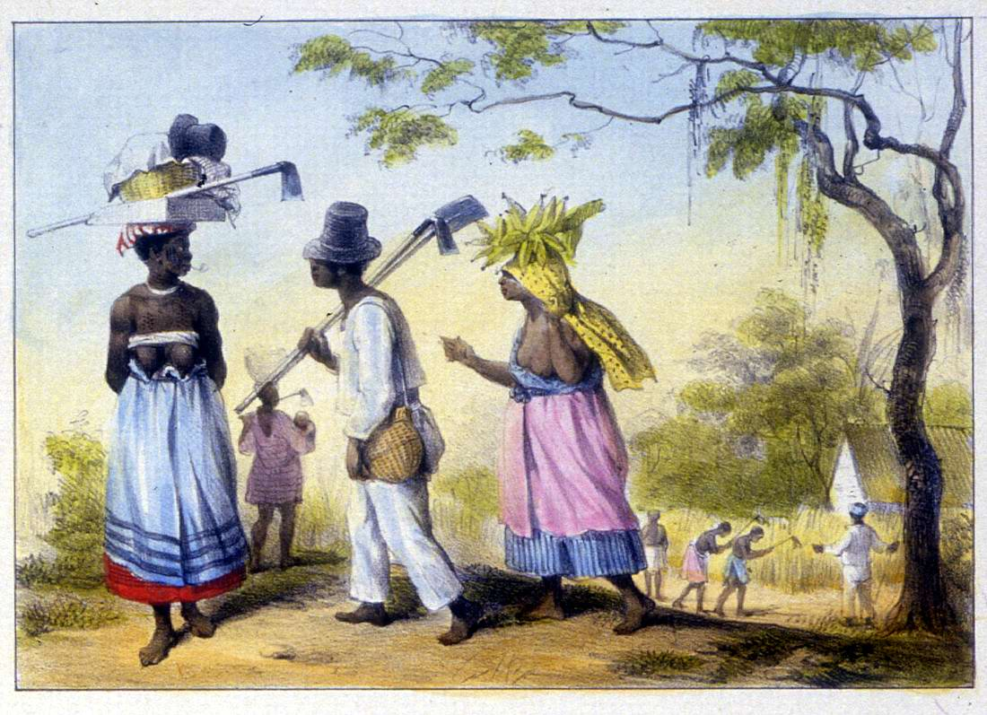 порно с рабами на уборке тростника