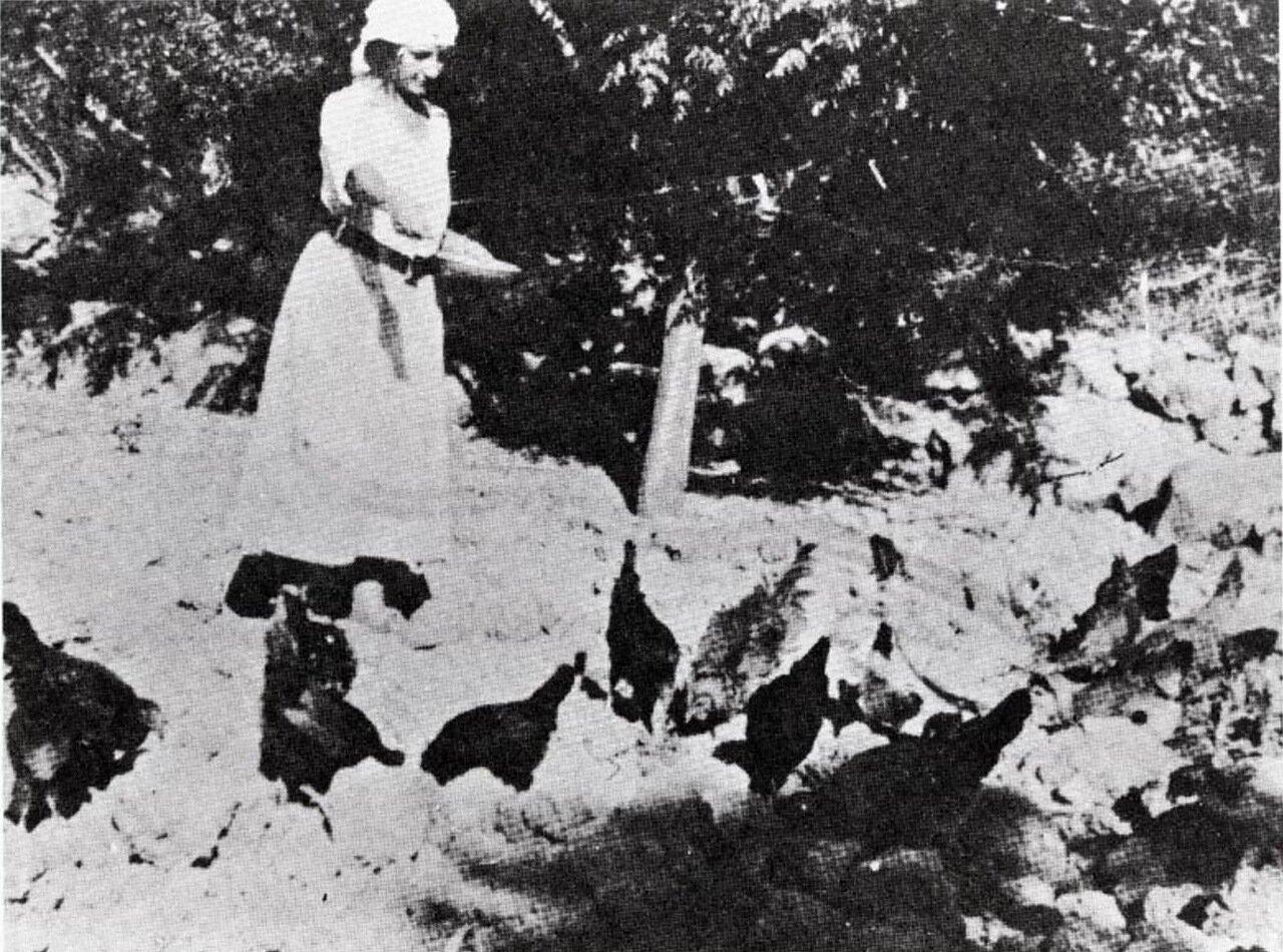 1921.  Голда Меир кормит кур в кибуце Мерхавия