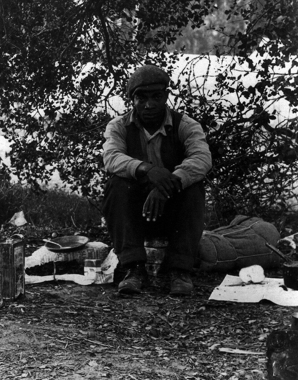 1935. Негр на гороховых полях в Нипомо, Калифорния