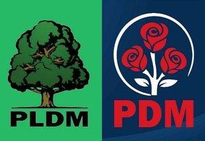ЛДПМ и ДПМ создали коалицию