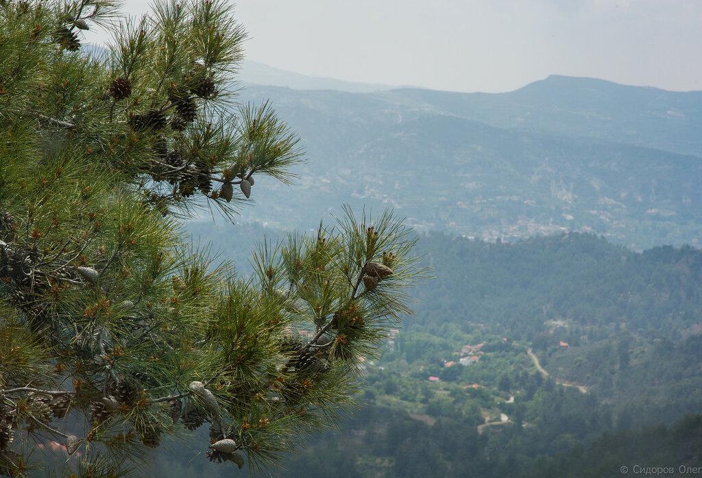 Кипр ч1-30.jpg
