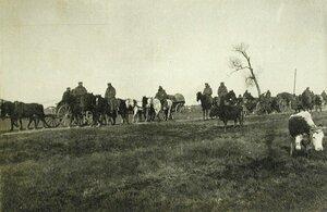 Солдаты одной из армейских частей за перевозкой полкового имущества в повозках.