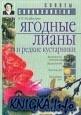 Книга Ягодные лианы и редкие кустарники