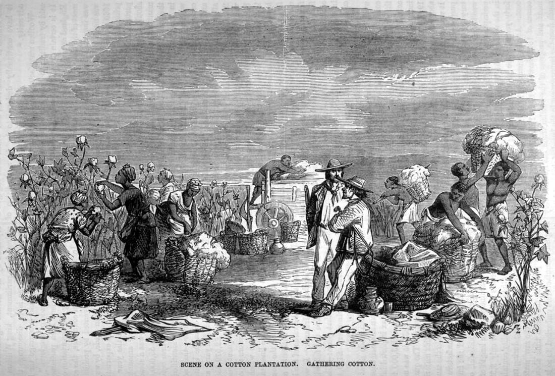 Труд рабов на хлопковой плантации (Юг США, 1861 год)
