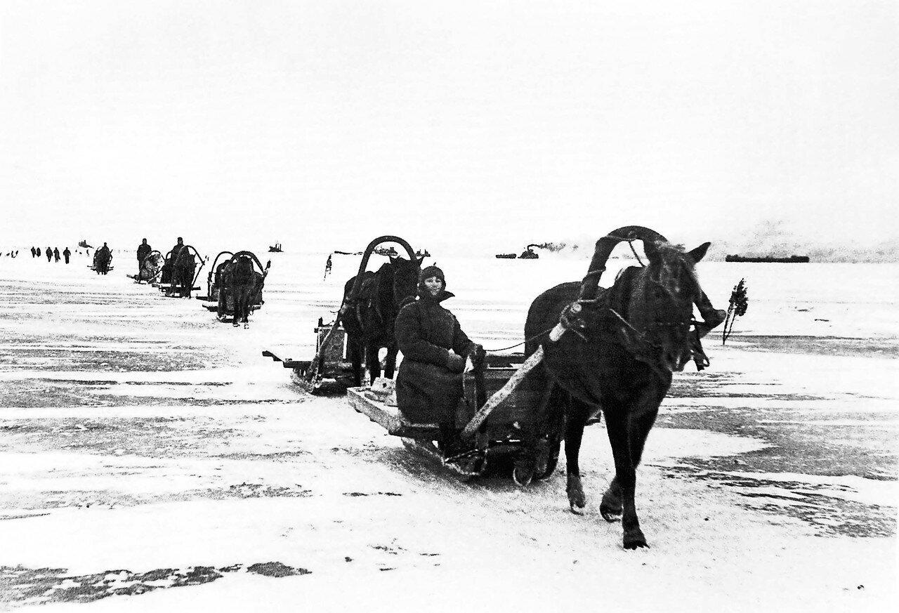 1943, 4 декабря. Порожний обоз направляется за продуктами для блокадного Ленинграда по льду Ладожского озера