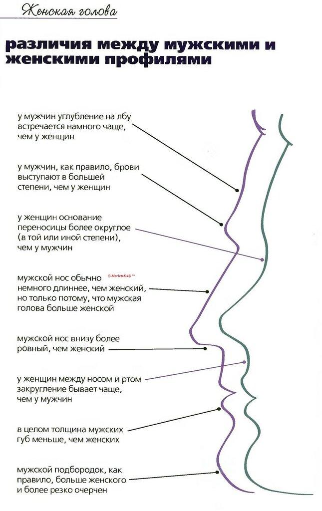 основные приемы классического массажа спины
