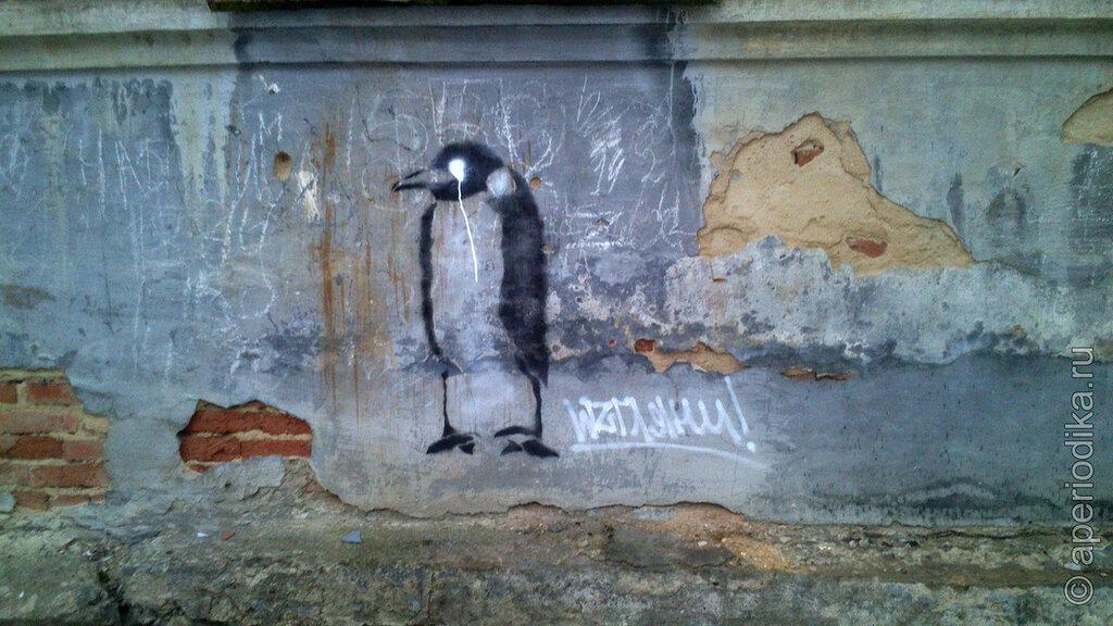 Плачущий пингвин