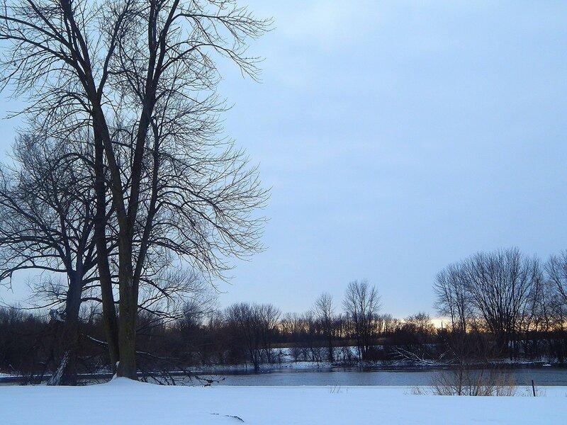 Уточки на реке Волчьей.