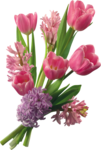 flower (16).png