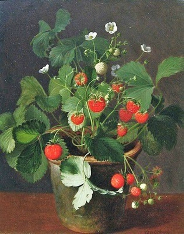 Otto Didrik Ottesen (Danish-born artist, 1816-1892) Strawberries in a Pot.jpg