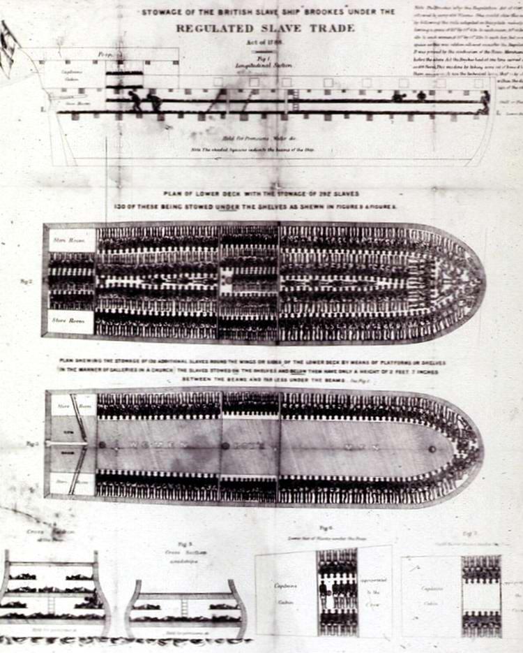 Общая схема размещения рабов в трюмах судна для перевозки рабов под названием Brookes, (1789 год)