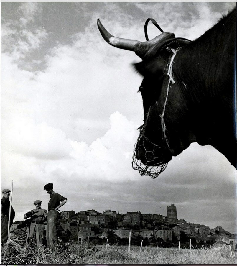 1951. Оверень