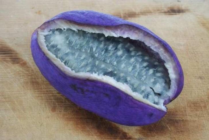 fotografii-ekzoticheskix-fruktov-so-vsego-sveta-kotoryx-vy-ne-videli-20-foto