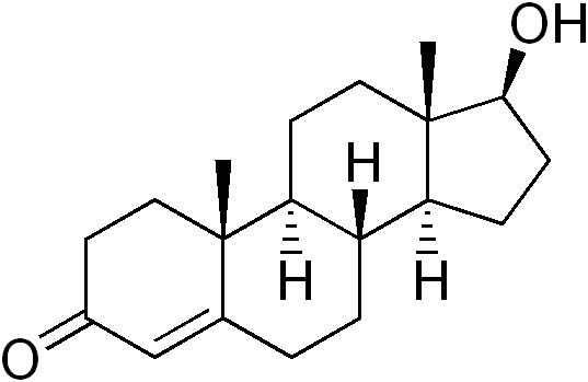 Структура_тестостерона.png