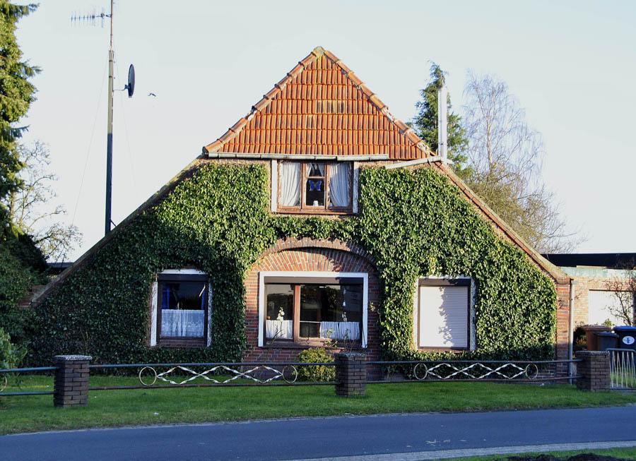 этот деревенские дома в германии проекты очные