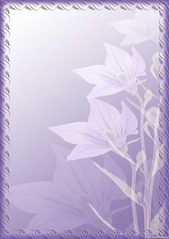 Фон открытка на формат а4