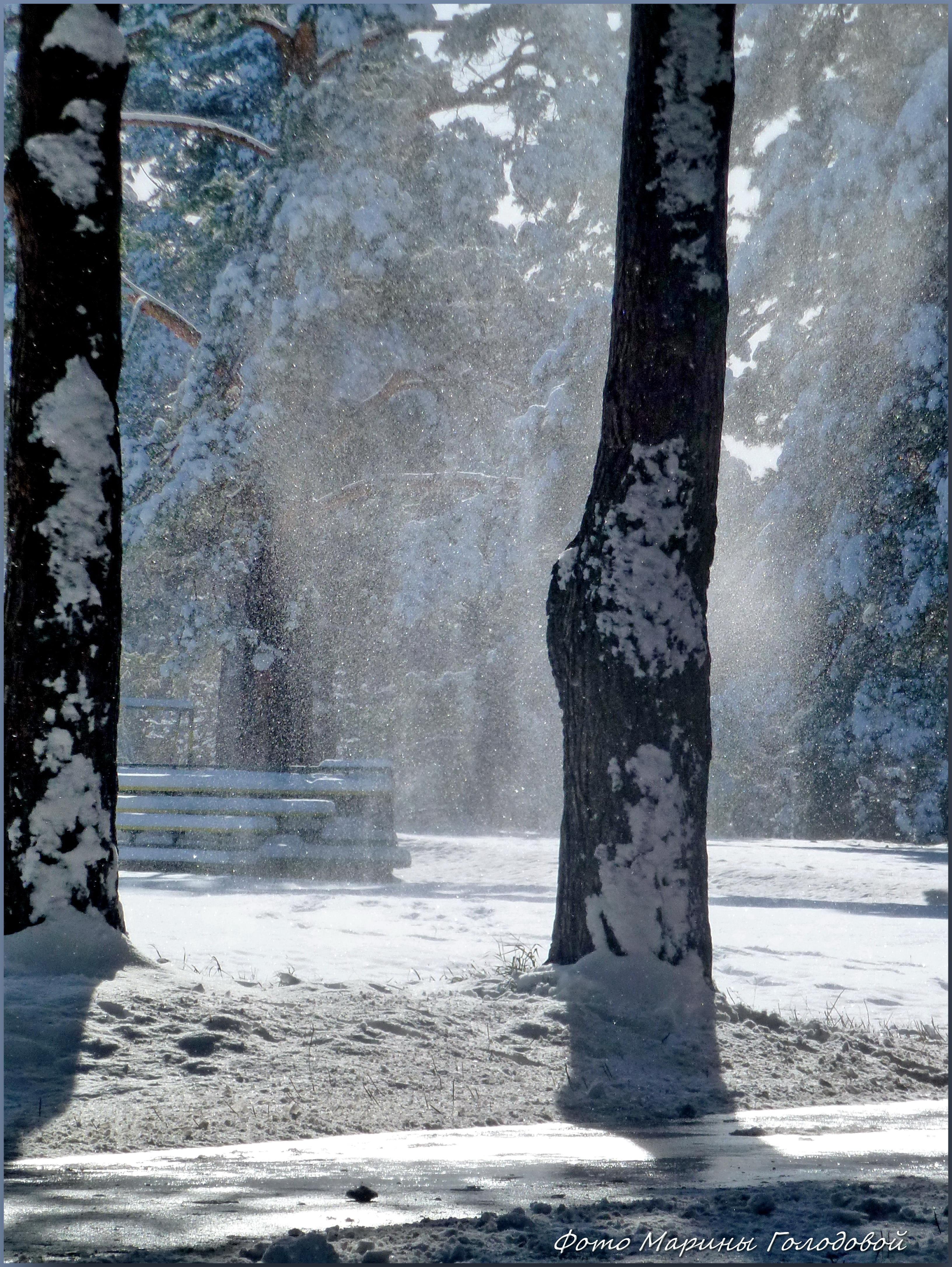 Начало зимы в Зенковском парке. Фото - ©Марина Голодова