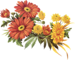flower_33.png