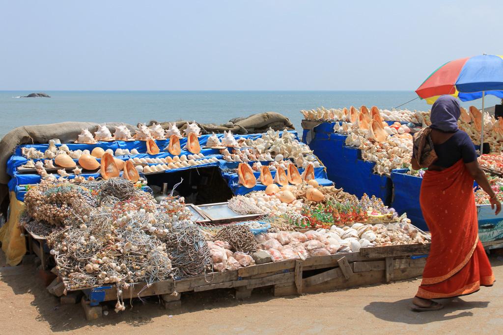 Фото 11. В рыбацкой деревне. Отдых в штате Керала, Индия. Отзывы туристов
