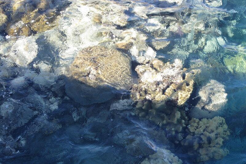 Коралловый берег, купаться запрещено