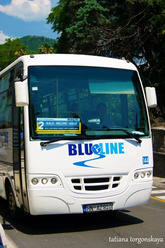 Автобус в Херцег Нови