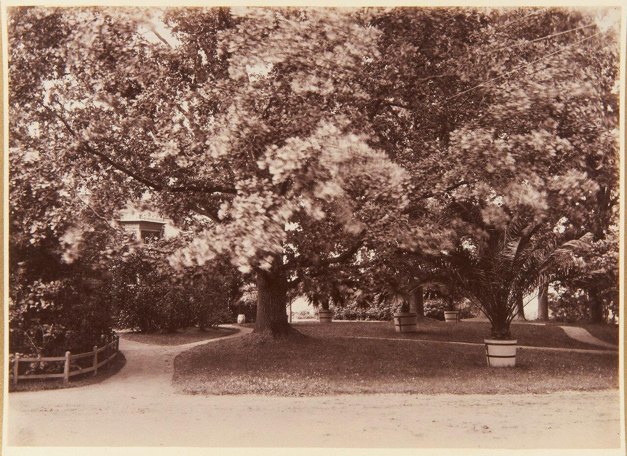 33. Озеро в парке Александрия и Коттедж, скрытый ветвями